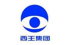 同新合作伙伴-山东西王糖业有限公司